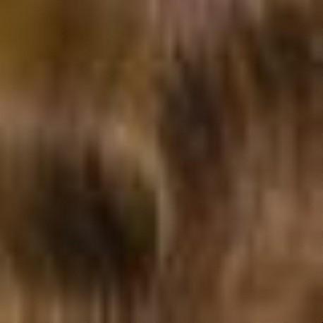 Volume Superieur Clip-In Memory Hair London 5CG.6CG/6G/8G