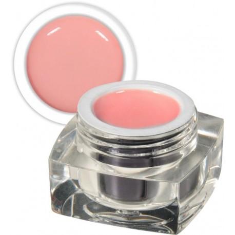 N66 GEL COULEUR pastell light rose 5ML